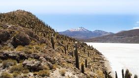 La Bolivia/Salar de Uyuni Fotografie Stock
