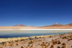 La Bolivia - sosta nazionale di Eduardo Avaroa Fotografie Stock Libere da Diritti