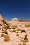 La Bolivia - sosta nazionale di Eduardo Avaroa Immagini Stock