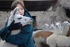 La Bolivie Images libres de droits