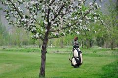 La bolsa de golf Imagenes de archivo