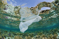 La bolsa de plástico en el océano en el filón coralino Fotos de archivo