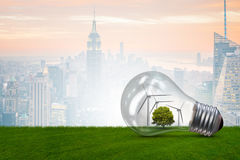 La bombilla en el concepto de la energía alternativa - representación 3d Imagen de archivo libre de regalías