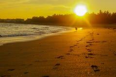 La bonne route pour la plage de paradis Image stock