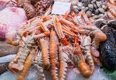 La Boqueria market in Barcelona. Lobsters at Mercat de Sant Josep de la Boqueria market in Barcelona, Spain Stock Image