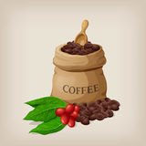 La borsa di caffè con i fagioli in sacco della tela ed il caffè si ramificano con le foglie Immagine Stock Libera da Diritti