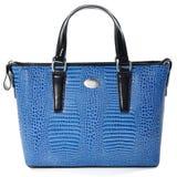 La borsa di cuoio femminile di Ð'lue fatta della pelle del rettile/ha isolato su briciolo Fotografia Stock