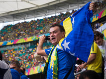 La Bosnie-Herzégovine éventent célébrer Victory Against Iran au match de coupe du monde photographie stock libre de droits