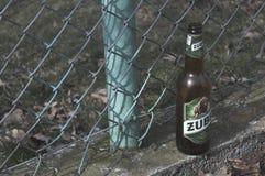 La botella de cristal de cerveza del bisonte de Zubr imagen de archivo