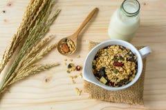La botella de leche fresca con los granos de la avena y del trigo integral forma escamas Fotos de archivo