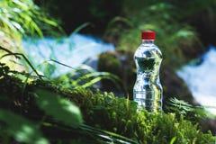 La botella transparente del plástico A de agua potable con una tapa roja se coloca en la hierba y el musgo en el fondo de un rugo Imagenes de archivo