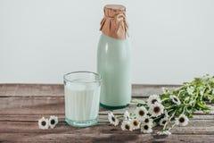 la botella y el vidrio de leche fresca con la manzanilla florece Fotografía de archivo libre de regalías