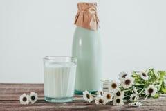 la botella y el vidrio de leche fresca con la manzanilla florece Fotos de archivo