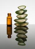 La bottiglia ambrata con la foglia di vera dell'aloe incide i pezzi con il contagoccia immagini stock