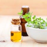 La bottiglia del timo del limone e del petrolio essenziale copre di foglie Immagini Stock
