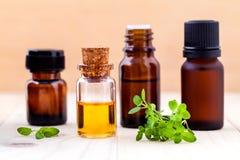 La bottiglia del timo del limone e del petrolio essenziale copre di foglie Fotografia Stock
