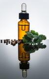 La bottiglia di olio essenziale del coriandolo con il contagoccia, coriandolo lascia Fotografia Stock Libera da Diritti