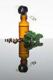 La bottiglia di olio essenziale del coriandolo con il contagoccia, coriandolo lascia Immagine Stock Libera da Diritti