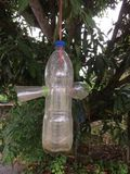 La bottiglia di plastica fa alla trappola dell'insetto fotografie stock