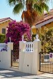 La bouganvillée admirablement de floraison est des flovers roses dans l'entrée à l'intérieur de maison l'espagne Image stock
