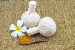 La boule de compression de fines herbes de station thermale, frangipani blanc fleurit (Plumeria Image stock