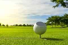 La boule de golf a mis dessus l'herbe verte du terrain de golf image stock