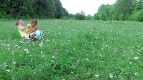 La boule de jeu d'enfants, configuration sur l'herbe, parmi les marguerites, emportent entre eux la boule Ils ont l'amusement Été clips vidéos