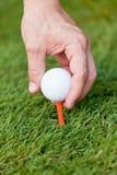 La boule et le fer de golf sur l'herbe verte détaillent le macro Image stock