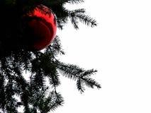 La boule rouge sur l'arbre de Noël image libre de droits