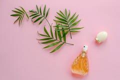 La bouteille élégante de parfum avec le jet du vert de paume part sur la goupille Photographie stock libre de droits