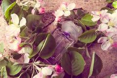 La bouteille de parfum avec la fleur de ressort s'embranche sur l'étiquette en bois photo stock