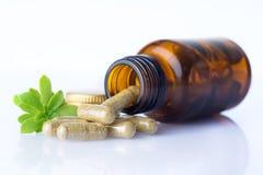 La bouteille de pilules homéopathiques avec des pilules et l'herbe poussent des feuilles Photographie stock libre de droits