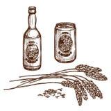 La bouteille et la bière blonde allemande d'ébauche de bière peuvent diriger le croquis illustration stock