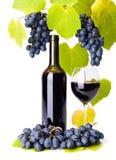La bouteille et le verre du raisin de petit morceau de vin rouge groupe Photographie stock libre de droits