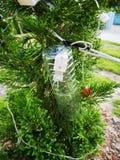 La bouteille potable est utilisée pour protéger un court-circuit sur l'arbre de Noël images stock