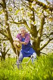 La branche de cerisier de jardinier se reposent Photo stock