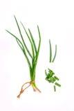 La branche des oignons frais de ressort et des oignons de ressort coupe pour la saison Image libre de droits