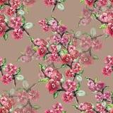 La branche fleurit Sakura Modèle sans couture d'aquarelle d'ouvrage sur Parme Violet Background Photographie stock libre de droits