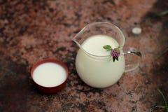 La brocca di vetro del latte con il trifoglio rosa ed il latte cadono Fotografia Stock Libera da Diritti