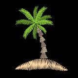 La broderie de palmier pique l'imitation sur le fond noir Image libre de droits