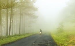 La brume déferlent sur le chemin Image libre de droits