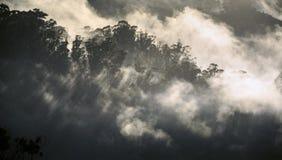 La brume de matin roule plus de les montagnes d'Ooty Images stock