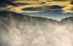 La brume de matin roule plus de les montagnes d'Ooty Photographie stock