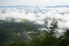La brume de mer au parc national de Phu Kradueng Image libre de droits