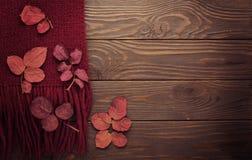 La bufanda hecha punto del color de Borgoña con las hojas de otoño en una oscuridad corteja Foto de archivo