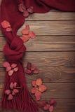 La bufanda hecha punto del color de Borgoña con las hojas de otoño en una oscuridad corteja Imágenes de archivo libres de regalías