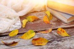 la bufanda, los libros y de oro delicados secan las hojas en la tabla de madera vieja al aire libre en el parque Fotos de archivo