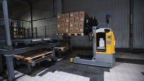La cámara cranes para arriba en estantes de las cajas de cartón dentro de un almacén de almacenamiento metrajes