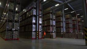 La cámara cranes para arriba en estantes de las cajas de cartón dentro de un almacén de almacenamiento almacen de video