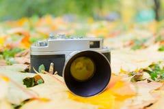 La cámara en las hojas de otoño Foto de archivo libre de regalías